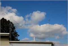 DL0HAL antennas (gynti_46) Tags: hamradio darc w19 amateurfunk antenne antennas trapdipole dl0hal
