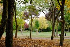 L automne (Chander-17) Tags: larochelle aquitainelimousinpoitoucharen france aquitainelimousinpoitoucharentes fr