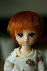In Awe (daggry_saga) Tags: abjd bjd balljointeddoll doll volks yosd nana four sisters