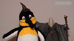 Best Friends Forever | Beste Freunde fr Immer (jensfechter) Tags: elements enter penguin pinguin friend friends freund freunde best beste bester fr immer for ever