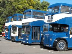 KHCT Classics @ Showbus 2016 (1) (Andy Reeve-Smith) Tags: leyland atlantean roe roebody 255 prh255g kingstonuponhullcitytransport kingstonuponhull khct hull eastyorkshire yorkshire humberside streamlined corporationtransport showbus 2016 showbus2016 donington doningtonpark castledonington derby derbyshire derbys mcw mcwbody metrobus aec aecregentiii regentiii regent 520 270 337 tkh270h okh337 sag520w weymann metrocammel metrocammellweymann