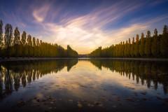Le Grand Canal du Parc de Sceau (IzTheViz) Tags: parcdesceau antony paris symetry sceau longexposure reflection reflets automne autumn sunset variotessartfe41635