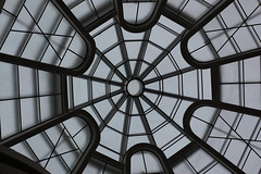 Cupula_5549 (Omar Omar) Tags: newyork newyorkny newyorknewyork usa usofa etatsunis usono manhattan d40 nikond40 50mmlens 50mm 50milimetros 50millimeters playingwith50mm playingwith50millimeteres jugandocon50milimetros joueravec50mm guggenheim solomonrguggenheim franklloydwright cupula dome cupule museum museo muse art arte cultura arquitectura modernism modernismo organic