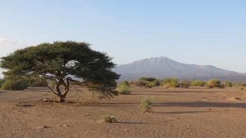Djibouti_2015 - Andaba et Moussa Ali