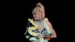 Giant albino python at the circus (Franck Zumella) Tags: giant albino python circus cirque albinos geant britney spears spectacle yellow white jaune blanc snake serpent performance artist show light big grand artiste