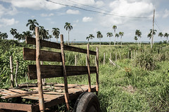 Cuba (boebl) Tags: cuba carrion cart