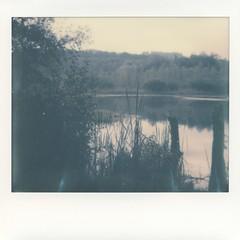 Foto Polaroid Image 0006 (marlis-art) Tags: imagespectra farbfoto impossible film polaroid