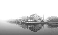 IMG_0711~Morning Fog (Cyberlens 40D) Tags: nj trees foliage leaves canon blackandwhite scenery landscapes bw fog reflections houses foggy platinumheartawards galaxyhalloffame