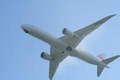 IMG_2624 (wmcgauran) Tags: kbos bos boston airport eastboston aviation airplane aircraft ja863j japanairlines jal boeing 787 787900