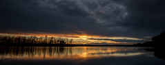 Another shot of tonights sunset (Kevin Povenz Thanks for the 2,800,000 views) Tags: 2016 november westmichigan michigan ottawa ottawacounty kevinpovenz jenison sunset evening reflection dusk clouds thebendarea pond lake sun trees canon7dmarkii sigma1020