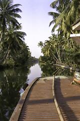 Backwater (Steve.frog) Tags: india indien asia kerala cochin tajmahal woman boat backwaters fisher fishernet scan negative film minox filmscan 35gt