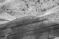 PaintedHills16-4486-2.jpg (KeithCrabtree1) Tags: dirt park oregon landscape paintedhills 2016p2