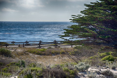 one perfect sea (nosha) Tags: ocean california blue sea usa seascape green beautiful beauty pacific horizon pacificgrove asilomar nosha