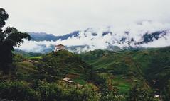 sapa valley (Jerlene Ng) Tags: houses mountain lake nature misty clouds trekking trek hill hills vietnam sapa riceterrace sapavalley