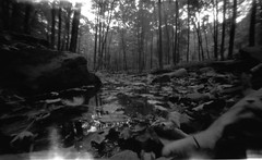 Zero image 6x9 Pinhole (The Stugots) Tags: trees white black tree fall classic mill film home water monochrome leaves analog digital creek vintage dead photography is photo still woods rocks long exposure shoot pittsburgh fuji image hc110 pinhole iso 6x9 neopan 100 asa zero development bnw mcconnell zeroimage acros zero69 issf mconnells