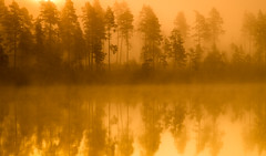 Burning (andreassofus) Tags: autumn trees light sunlight mist lake color nature water beautiful misty fog sunrise canon reflections landscape sweden foggy naturallight september colourful intimate vrmland mistymorning tcksfors holdall intimatelandscape