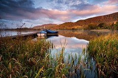 Autumn gold (41/50) (Stuart Stevenson) Tags: uk photography scotland clydevalley stuartstevenson