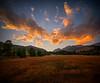 Endovalley Sunset (PT Photo) Tags: autumn orange colorado pines aspens elk hdr sigma1020mm rockymountainnatpark vertorama dphdr ptphoto lightroom5 pse12