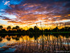My Florida (DonMiller_ToGo) Tags: sunset sky lake nature landscape florida sunsets g5 skyscapes hdr goldenhour skycandy cloudsonfire 5xp hdrphotography 5exposures millerville sunsetmadness sunsetsniper