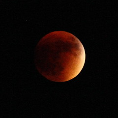 Lunar Eclipse 150 (Az Skies Photography) Tags: red arizona moon rio canon eos rebel eclipse blood az super september rico 27 lunar lunareclipse bloodmoon 2015 arizonasky riorico rioricoaz t2i 92715 arizonaskyline supermoon canoneosrebelt2i eosrebelt2i arizonaskyscape 9272015 superbloodmooneclipse superbloodmoon september272015