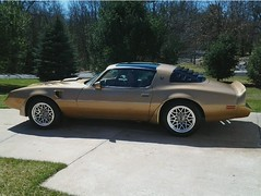 Goldbird's 1979 Solar Gold T/A