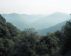 Sierra in Layers (EmiliaTurner) Tags: california travel film nature analog mediumformat landscape roadtrip portra sequoia sierranevadas sequoianationalforest bronicags1