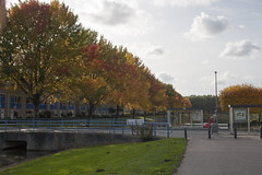 Floriade_251015_34 (Bellcaunion) Tags: park autumn fall nature zoetermeer rokkeveen florapark