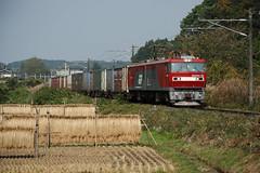 EH500-19 (Masaki Miida) Tags: japan railway  tohoku fukushima    jrfreight  jr tohokuline