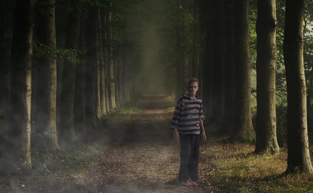 Image result for forest boys dark
