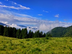 20150619_092801_HDR (giulianacasagranda) Tags: blue summer sky italy mountain tree green nature grass landscape trentino malga cambroncoi 1650m