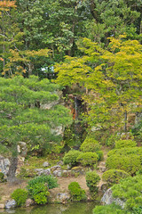 Garden Forest (Japanorama) Tags: plants nature japan forest landscape flow japanese waterfall kyoto rocks peaceful boulder foliage drip environment dribble springwater unspoiled crystalclear scenicbeauty trickledown mosscovered kyotoprefecture environmentalprotection waterresources naturalbalance