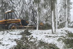 Forest harvesting _2012_01_19_0051 (FarmerJohnn) Tags: winter snow pine forest canon finland forestry stack lumi pino talvi spruce firewood plywood harvester mets laukaa 24105     mnty tukki pulpwood kuusi  polttopuu valkola   canoneos7d metsnhoito vaneri harvesteri petruma kuitupuu   forestharvesting juhanianttonen metsnkorjuu    hitonmki canonef2410540isusm