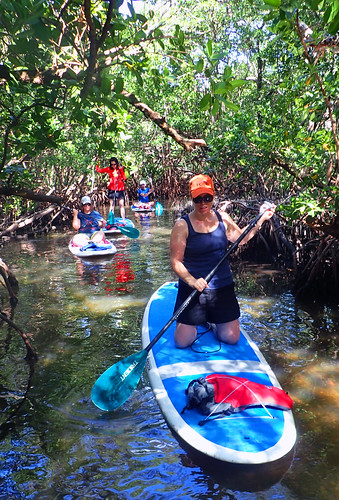 11_29_15 Private Paddle Tour Lido Key FL 03