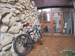 bike portrait (> akela <) Tags: bicycle bicicleta baiamare bicikli nagybánya