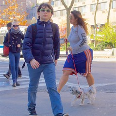boy dog newyork girl sunglasses walking alone manhattan broadway upperwestside hood leash peeps