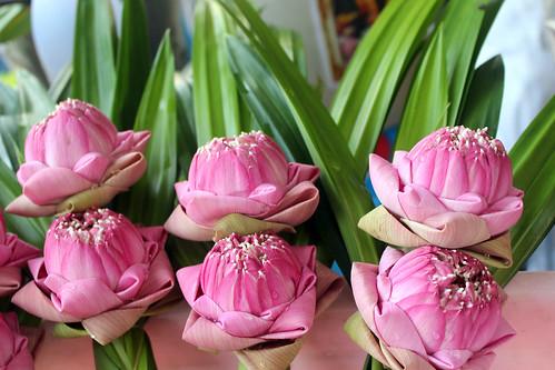 Hua Hin day markets - pink lotus