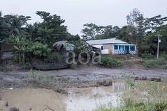 H503_2736 (bandashing) Tags: trees england house home water rain landscape manchester outdoors village flood path monsoon lead sylhet bangladesh socialdocumentary paddyfield aoa bandashing akhtarowaisahmed 22tila