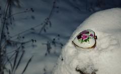 DSC_0185 picnik (Saramanzinali) Tags: winter snow love nature natura neve inverno cuore amore oggetti bosco