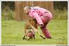 First Von King Von Backdraft RINALDI V  -0900 (Fab Photos Canine et Sportive) Tags: king von first backdraft