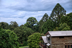 "View from veranda of  ""Possum Lodge"" (Tatters ) Tags: roof house wooden view australia 18135mm oloneo bunyamnp"