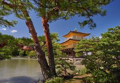 Golden temple (Tim Ravenscroft) Tags: golden temple kinkakuji kyoto japan