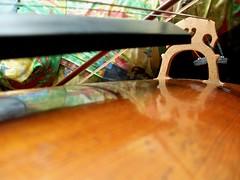 cello0177 (michaelgrr) Tags: oxford music cello musicalinstrument closeup