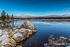 IMG_9410 (norwegen-fotografie.de) Tags: norw norwegen norway norge femunden femundsmarka villmark hedmark see wildnis wald landschaft