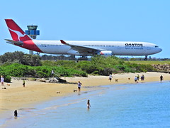 Flying kangaroos (Couldn't Call It Unexpected) Tags: qantas airbus a330 sydney australia kingsfordsmithairport dogs beach