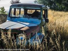 Found this #old #car in a field. #explorediscovershare #abandoned #ruralex #ruralexploration #olympus #olympusomd #mirrorlesscamera #mirrorless #exploreolympus #utah #utahphotographer #flickr #picoftheday (explorediscovershare) Tags: instagram found this old car field explorediscovershare abandoned ruralex ruralexploration olympus olympusomd mirrorlesscamera mirrorless exploreolympus utah utahphotographer flickr picoftheday
