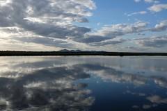 Water and sky and the You Yangs (Hone Morihana) Tags: westerntreatmentplant shorebirds migratorybirds