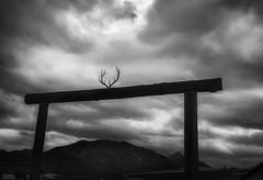 ranch entrance gate, Joseph, Oregon (jody9) Tags: antlers gate ranch joseph oregon stormy