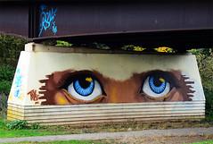 The Eyes Have It. (curly42) Tags: trix streetart artwork eyes bridge painting