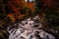 Autumn in full flow (Morag.) Tags: river braan dunkeld scotland autumn fall red gold water nikon d3300 nikkor landscape landschaft rocks paysage natural digital