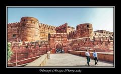 #India #agra #agrafort #agra_fort #uttarpradesh #uttar_pradesh #jalaluddinmuhammadakbar #shahjahan #mughal #mughalempire #mughalarchitecture #indiaphotosociety #ips  # # #_  #___  #_   #  # # (alrayes1977) Tags: india agra agrafort uttarpradesh jalaluddinmuhammadakbar shahjahan mughal mughalempire mughalarchitecture indiaphotosociety ips